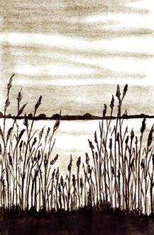 le-désert-des-manandes-©-Jacques-Le-Texier